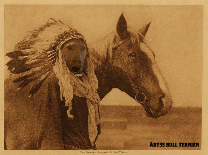 Sitting Bull est son nom en anglais traduit de son nom en lakota Tĥatĥanka Iyotĥanka ou Tatanka Yotanka qui signifie « bison mâle qui se roule dans la poussière ». En français, il peut se traduire par « Taureau Assis » ou « Taureau au repos ». Sitting Bull était cependant initialement nommé Ȟoká-Psíče (« Jumping Badger », blaireau bondissant), qui était un nom temporaire[1], et reçut le nom de son père, Sitting Bull, quand il était adolescent.  Le surnom d'Húŋkešni (« lent ») lui est parfois donné à cause de son habitude à prendre son temps avant de répondre à une question[2]. Biographie [modifier] Jeunesse [modifier]  Sitting Bull est né dans la région de Grand River dans le Dakota du Sud vers 1831. Il excelle en course à pied et en équitation, et est très précis avec un arc et des flèches[3].  Il tue son premier bison à l'âge de dix ans et marque son premier coup au combat à quatorze ans lors d'une bataille contre les Crows[4]. Il dépasse l'un des guerriers lors de sa retraite et fait tomber le Crow de son cheval. Pour cela, Sitting Bull obtient une plumes blanche d'aigle, symbole d'un premier coup[Note 1], et reçoit également le nom de son père. Son père a ensuite changé son propre nom en Jumping Bull (« Taureau bondissant »)[5]. C'est aussi lors de cette cérémonie du passage vers l'âge adulte que Sitting Bull a reçu un bouclier personnalisé de son père, qui était richement décorée d'une scène représentant l'un des rêves de son père. Mariage et famille [modifier]  L'histoire familiale de Sitting Bull est peu sûre, mais son premier mariage a eu probablement lieu en 1851 avec une femme nommée Pretty Door ou Light Hair (« Cheveux clairs »)[6]. En 1857, il a un fils qui meurt de maladie rapidement, et sa femme meurt pendant l'accouchement de celui-ci.  Au moment de la mort de son fils biologique, il adopte son neveu One Bull[Note 2]. Toujours en 1857, Sitting Bull a adopté un jeune Assiniboine comme son frère, et il s'est appelé Jumping Bull en hommage au père de Sit